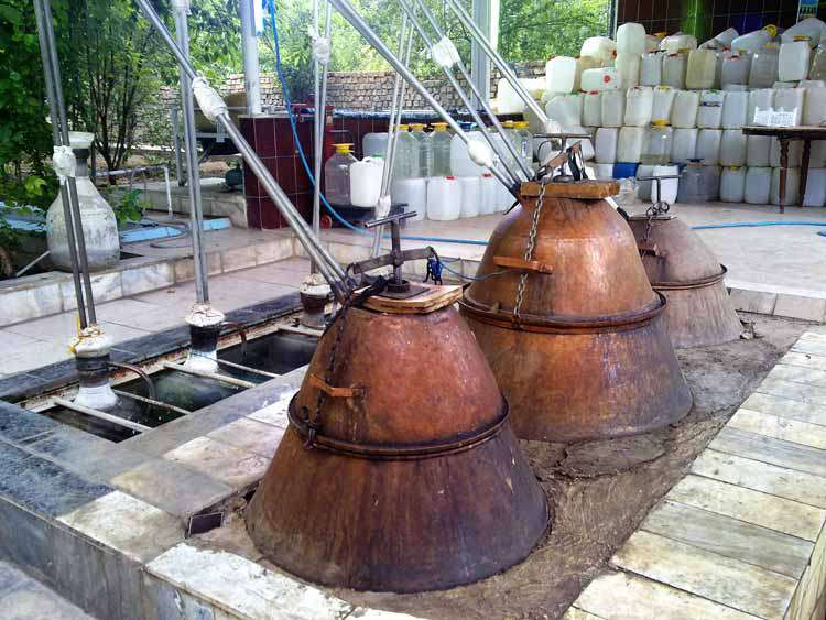 Distillation Workshop: A Symbol of Iranian Industry