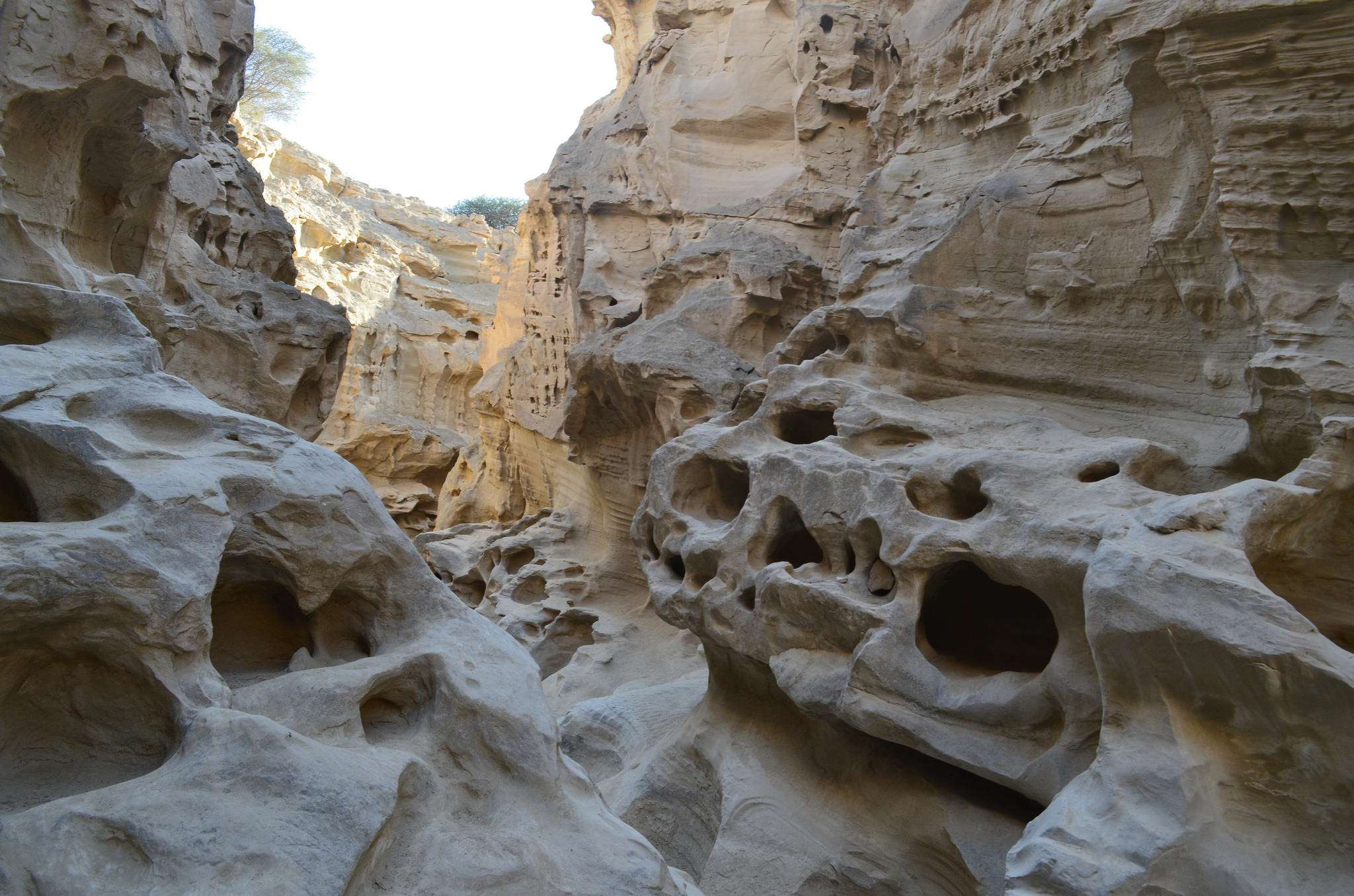 Qeshm, Hengam & Hormuz in 3 Days: Three Gems of Persian Gulf